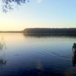 ...w jeziorze harcują różne takie