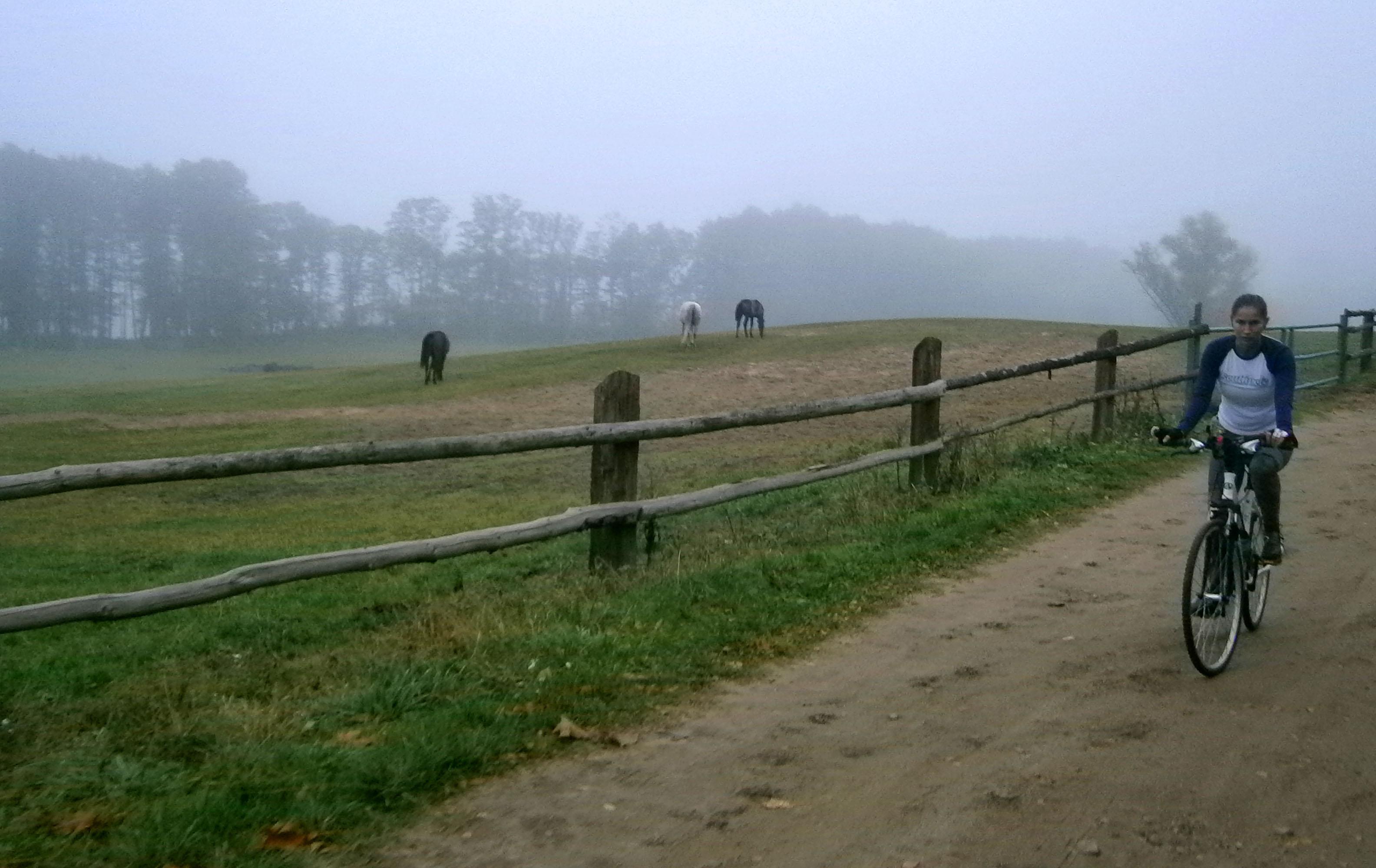 po niemieckich pastwiskach hasam żwawo, bo z górki